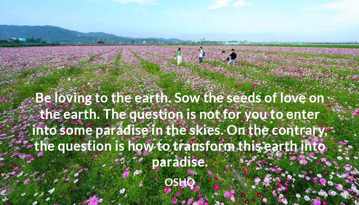 earth love osho paradise seed