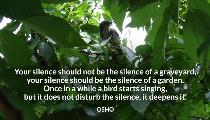bird deepens disturb garden graveyard not silence singing