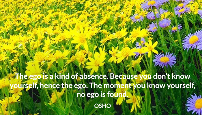 absence ego know osho yourself