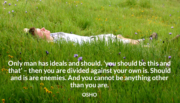divide enemies ideals osho should that this