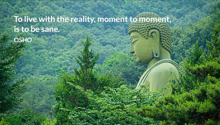 be live moment reality sane