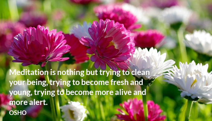 alert alive being clean fresh meditation osho young