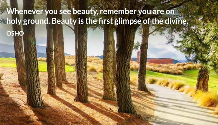 beauty divine first glimpse ground holy remember see