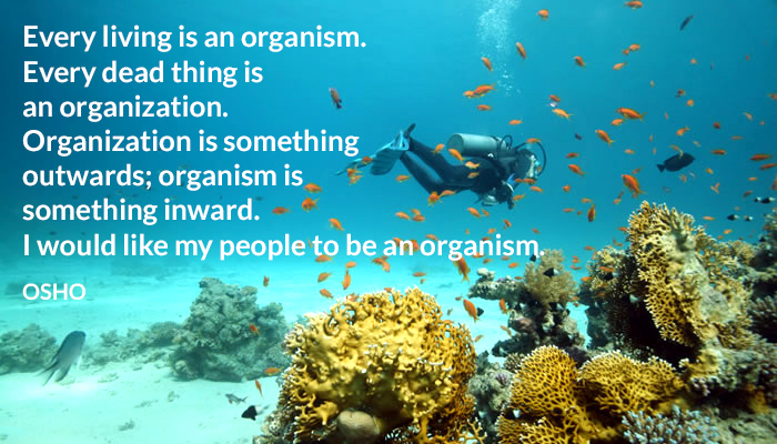be dead inwards living organism osho outwards to
