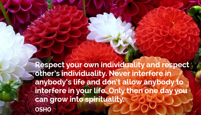 allow anybody don grow individuality interfere life never osho oshoonindividuality respect spirituality