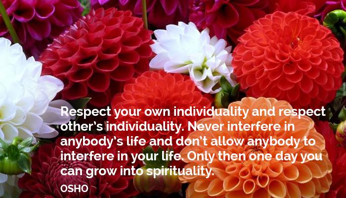 allow anybody don grow individuality interfere life never osho oshoonindividuality respect spirituality