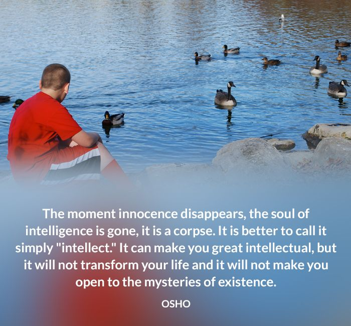 existence intellect intelligence life mysteries osho quote transform