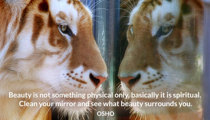 beauty mirror osho physical spiritual surrounds