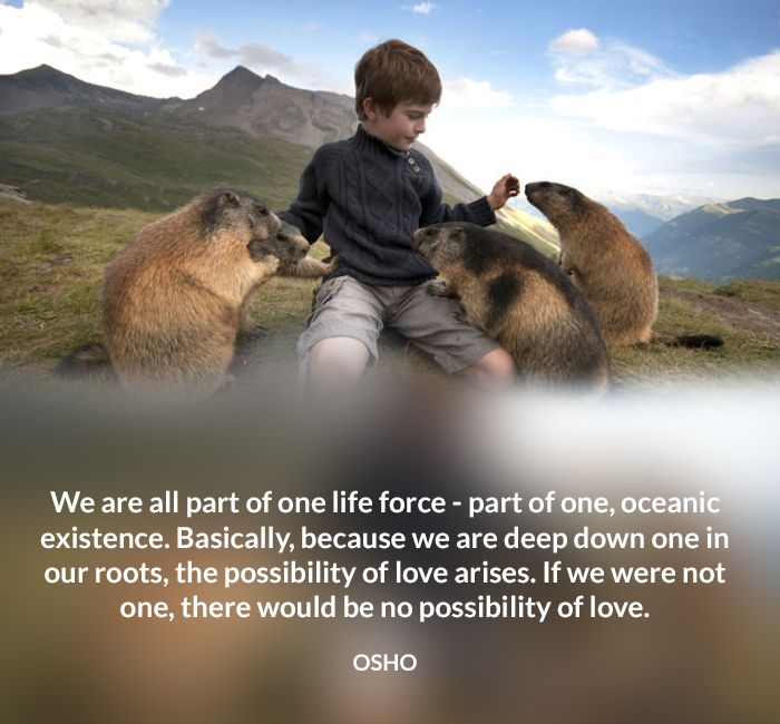 deep down existence force life love oceanic one osho quote root weare
