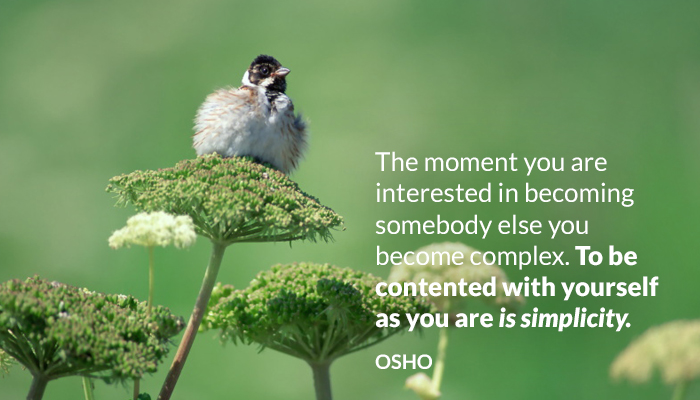 becoming complex contented osho simplicity somebody yourself