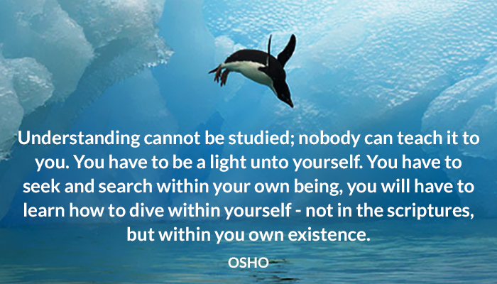being dive existence light osho scriptures search seek teach understanding within your yourself
