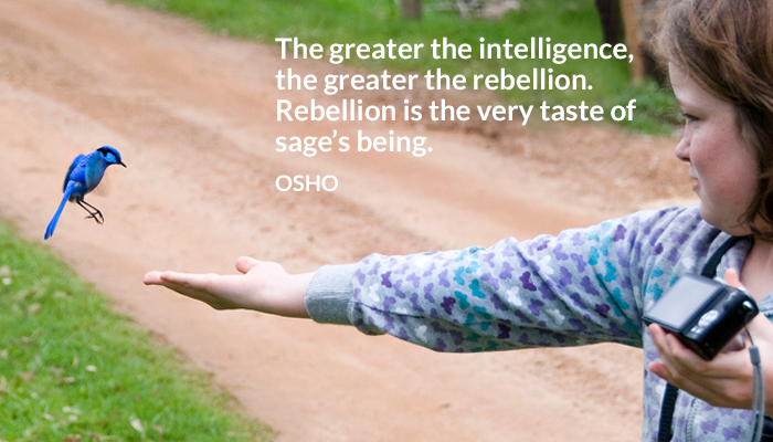 being greater intelligence rebellion sage taste